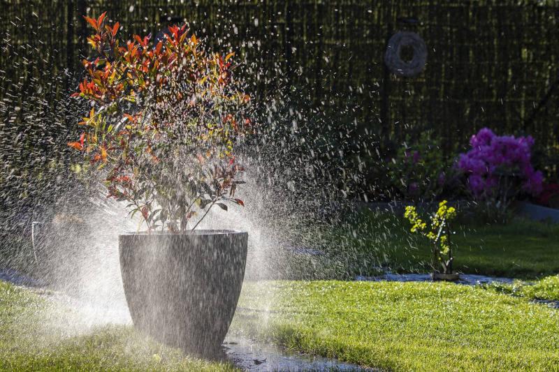 Gmina Obrzycko wprowadziła bezwzględny zakaz podlewania ogródków i napełniania basenów!