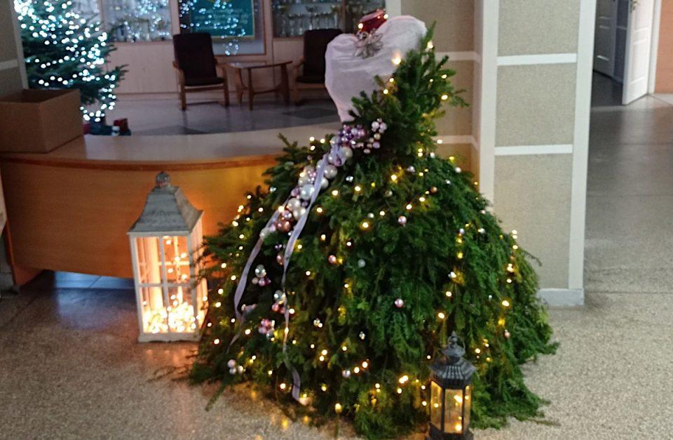 """Architekci krajobrazu z """"Rolnika"""" zaprojektowali świąteczne dekoracje [ZDJĘCIA]"""