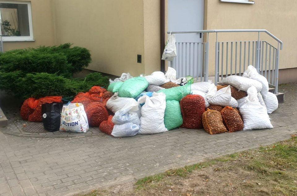 Dzieci ze Szkoły Podstawowej w Nojewie zebrały prawie 6 ton kasztanów. Za środki pozyskane z ich sprzedaży zakupiono 152 książki