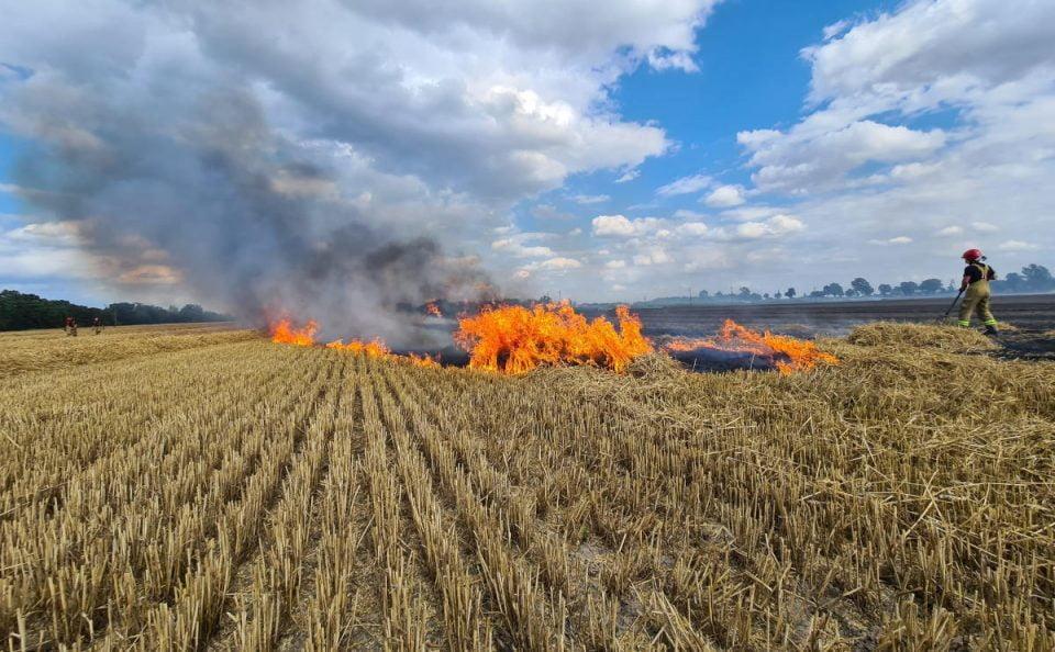 Powiat szamotulski: trzy pożary ścierniska w jeden dzień