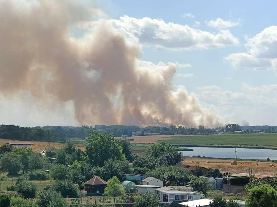 Duży pożar zboża w Przecławiu. Z ogniem walczyło ponad 20 zastępów i samolot gaśniczy